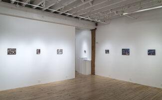 Maya Brodsky, installation view