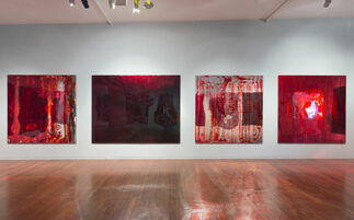 Dale Frank, 2017, Roslyn Oxley9 Gallery, installation view