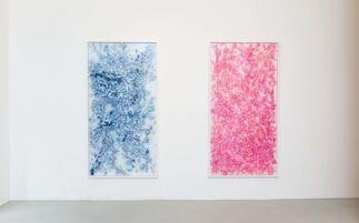 Alfredo Pirri - Arie, installation view