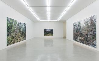 Lee Kwang-Ho, installation view