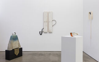 Trish Tillman: Insoluble Bonds, installation view