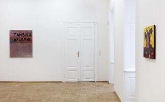 Tambula malembe, installation view