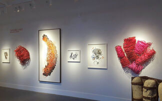 TANGIBLE LINES, installation view