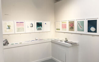 Trace: a collaborative exhibition by the members of Shift-Lab: Katie Baldwin, Denise Bookwalter, Sarah Bryant, Macy Chadwick and Tricia Treacy, installation view