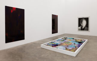 Amie Dicke, installation view