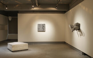 In the Skin, installation view
