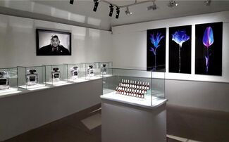 Yves Hayat: Perfume, That Obscure Object of Desire, installation view