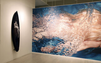 Underwater: Michael Dweck & Howard Schatz, installation view