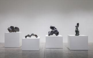 Sui Jianguo, installation view