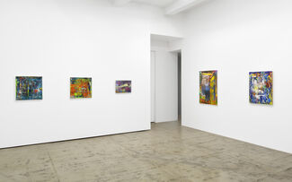 Gerhard Richter: Paintings and Drawings, installation view