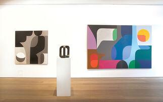 Stephen Ormandy - Digital Organic, installation view