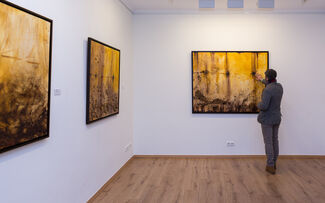 Marcos Tamargo- The Delicate Force, installation view