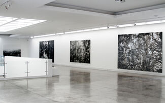 Linea Negra, installation view