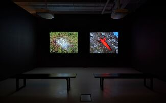 Five Artists: Sites Encountered, installation view
