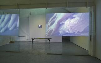 Software Garden, installation view