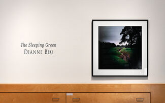 """Dianne Bos: """"The Sleeping Green"""", installation view"""