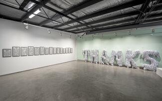 An Awkward Dance, installation view