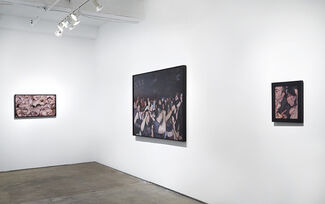 Mosh Pits, Raves and One Small Orgy: New Paintings by Dan Witz, installation view