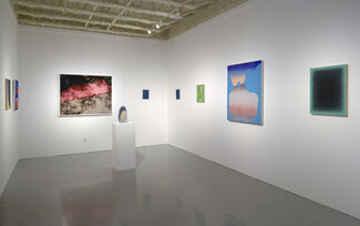 """""""Summer Party"""", installation view"""