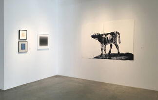 Drawing Conclusions - Works on Paper by 34 Artists, installation view