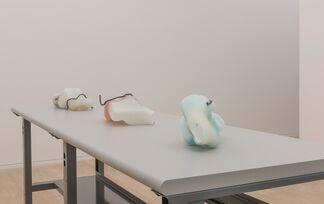 Valerie Snobeck: Reservoirs, installation view