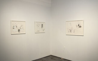 Maria Lynch: Black Over White, installation view