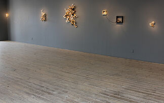 Jennifer Trask: Unnatural Selection, installation view