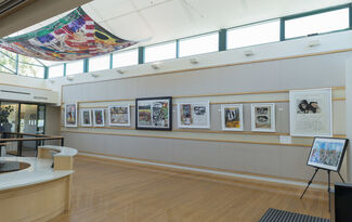 Safari with Dan Eldon, installation view