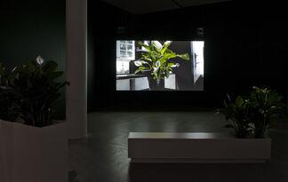 Hanne Nielsen og Birgit Johnsen - Inklusion / Eksklusion, installation view