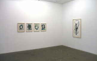 A Snake is the Frst Line, installation view