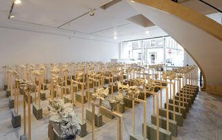 Congregation, installation view