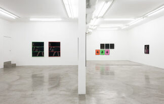 Hannah Whitaker: Cold Wave, installation view