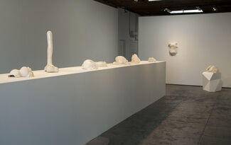 Sharon Engelstein   Ever to Find, installation view