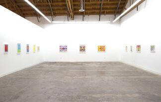 Jack Davidson: extravagant promises, installation view