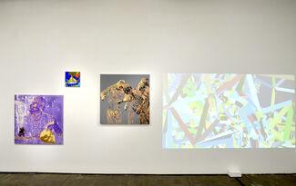 Miao Xiaochun: Metamorphosis, installation view