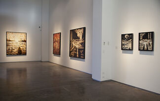 Michael Roque Collins: Beyond Earth's Rhythms, installation view