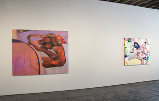 Marty Schnapf: Fissures in the Fold, installation view