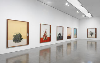 Taryn Simon: Paperwork and the Will of Capital An Account of Flora as Witness, installation view
