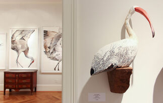 Low Country, installation view