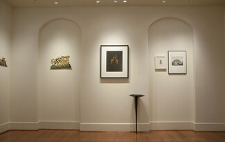 Cultivate Reimagined, installation view