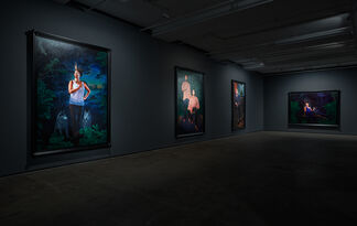 Kehinde Wiley: Trickster, installation view