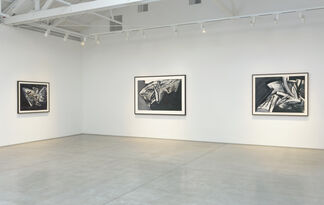 Jay DeFeo: Paintings on Paper: 1986 - 1987, installation view