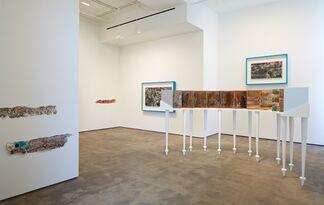 Sun Xun: The Time Vivarium, installation view
