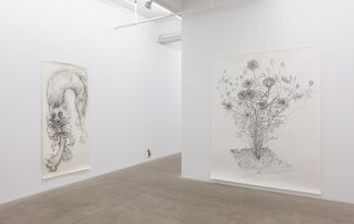 I Rot Before I Ripen, installation view