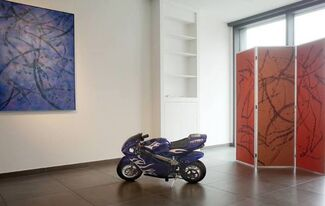 Mathieu Roquigny (FR) - That's all Folks!, installation view