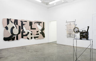 """IVAN ARGOTE """"DEEP AFFECTION"""", installation view"""