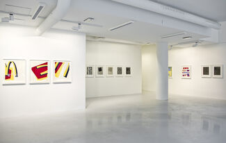 Keith Coventry - Copper and Silk, installation view