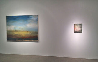 Shawn Dulaney, All the Open Space, installation view