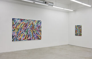 JAN PLEITNER   THE BITTER FRUITS OF THE JUNGLE, installation view