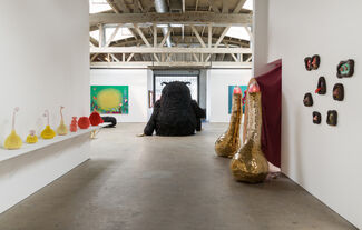 Haas Angeles, installation view